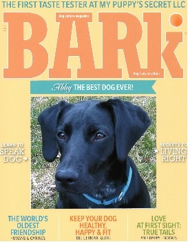 Abby-Cover-The-Bark-12213